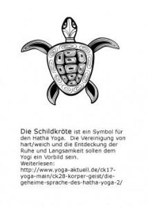 Schildkröte und Txt